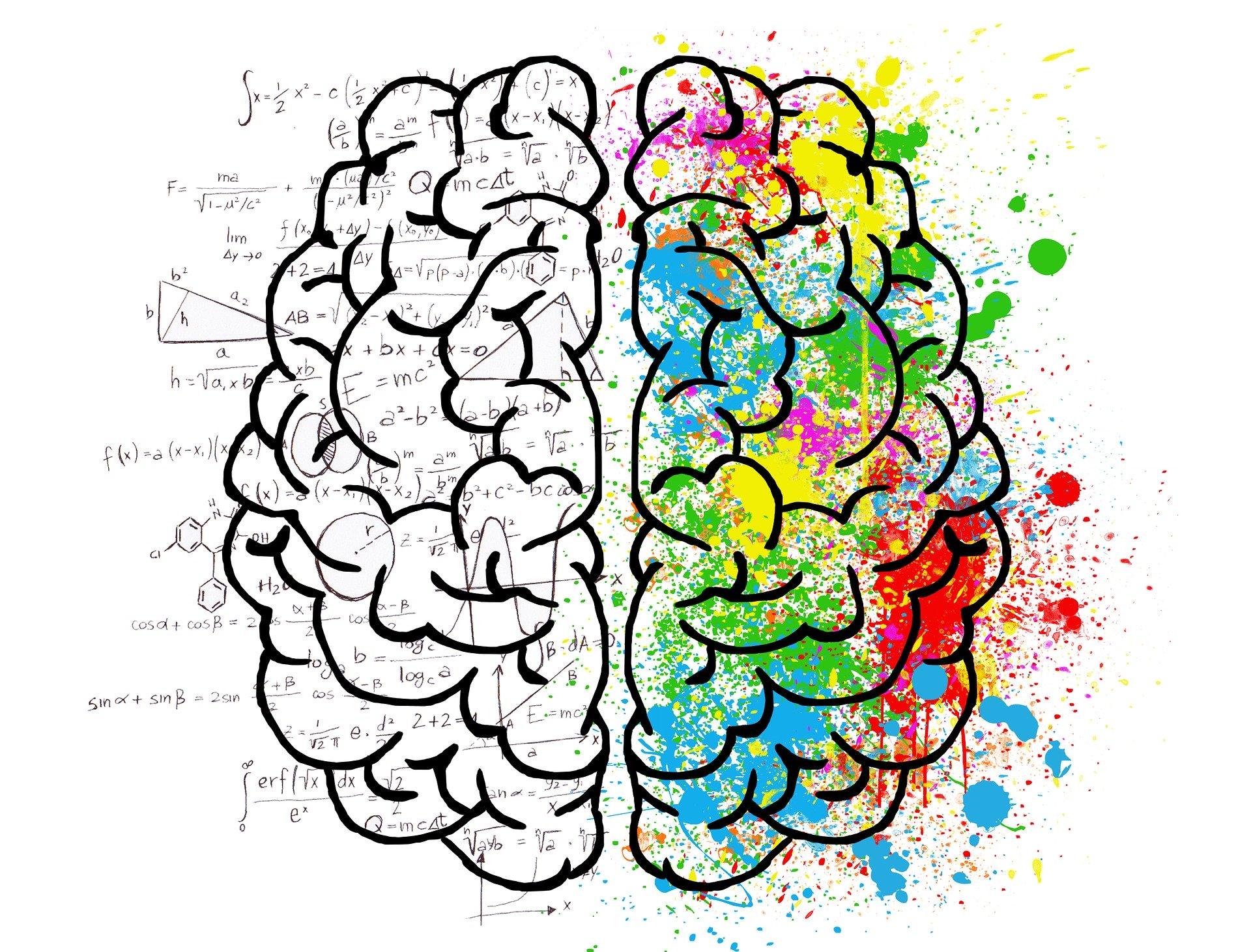 ilustrace mozku